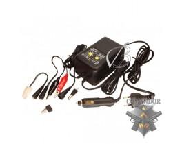 Универсальное зарядно- разрядное устройство 12-220 Вольт