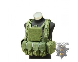 Жилет TMC RRV Plate Carrier Set w MLCS Back Panel (OD)